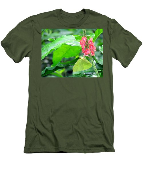 Yellow Sulphur On Porterweed Men's T-Shirt (Athletic Fit)