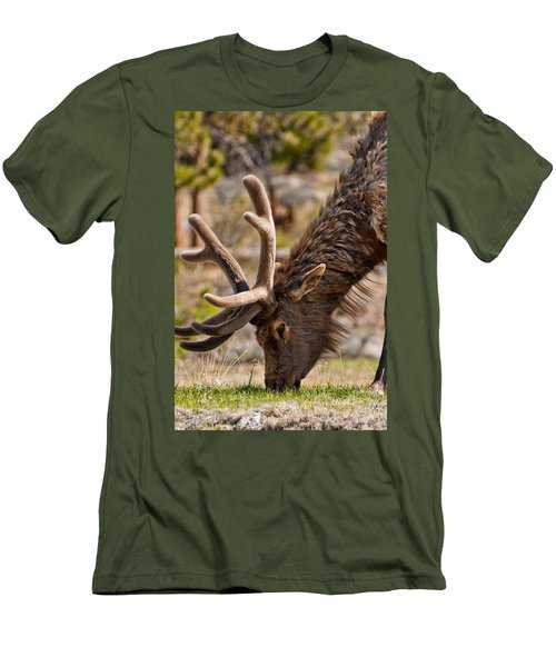 Young One Men's T-Shirt (Slim Fit) by Colleen Coccia
