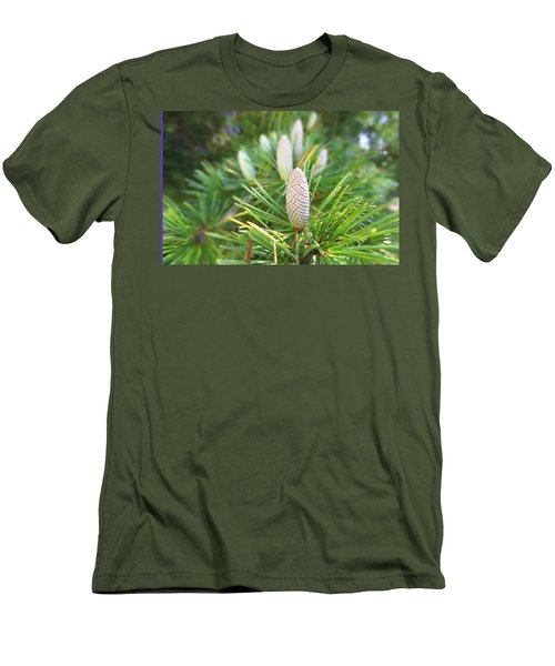 Young Pine Cones Men's T-Shirt (Slim Fit) by Anne Mott