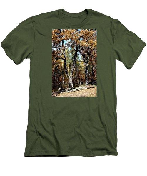 Autumn In Forest Men's T-Shirt (Slim Fit) by Henryk Gorecki