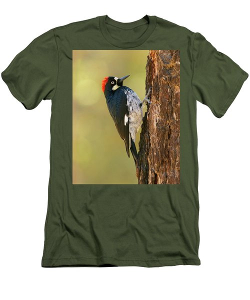 Men's T-Shirt (Slim Fit) featuring the photograph Acorn Woodpecker by Doug Herr