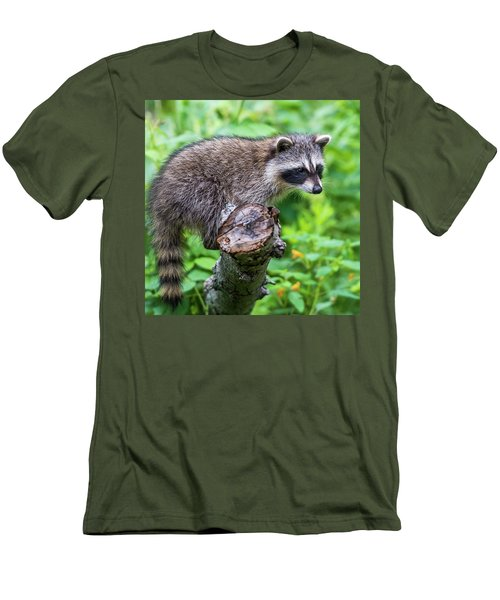 Men's T-Shirt (Slim Fit) featuring the photograph Baby Racoon by Paul Freidlund