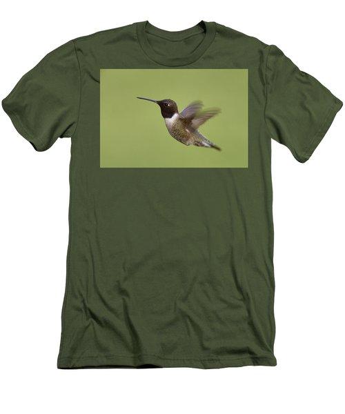 Black-chinned Hummingbird Men's T-Shirt (Slim Fit) by Doug Herr