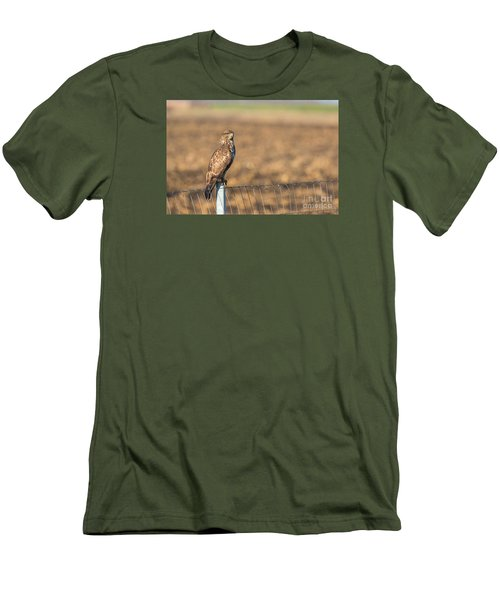 Common Buzzard Along The Highway Nis - Budapest Men's T-Shirt (Slim Fit) by Jivko Nakev