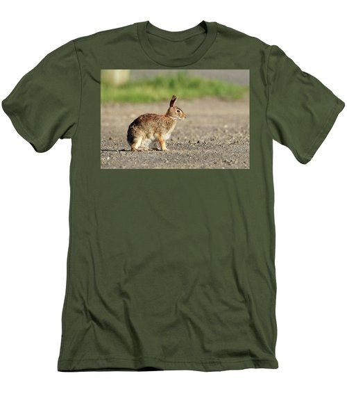 Cottontail Rabbit Stony Brook New York Men's T-Shirt (Athletic Fit)