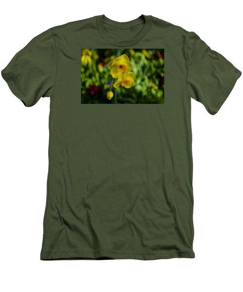Daffodils Men's T-Shirt (Slim Fit) by Dan Hefle