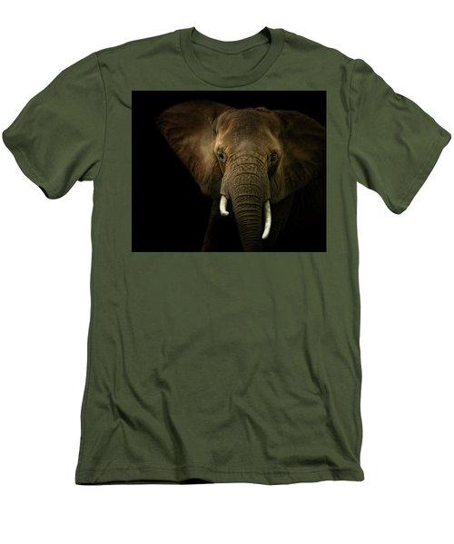 Elephant Against Black Background Men's T-Shirt (Slim Fit) by James Larkin