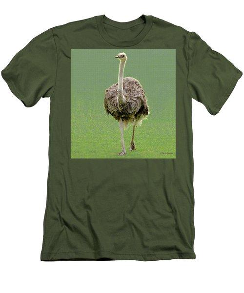 Emu Men's T-Shirt (Athletic Fit)