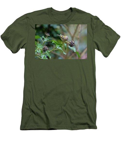 Goldcrest Men's T-Shirt (Slim Fit) by Matt Malloy