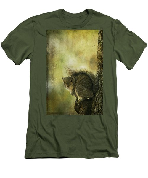 Gray Squirrel Men's T-Shirt (Athletic Fit)