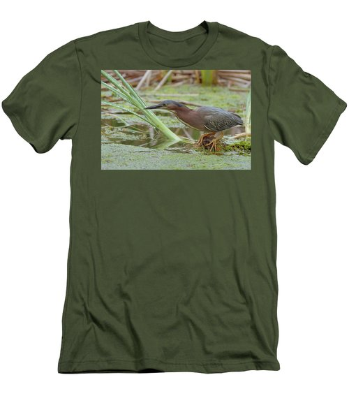 Men's T-Shirt (Slim Fit) featuring the photograph Green Heron by Doug Herr