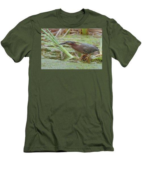 Green Heron Men's T-Shirt (Slim Fit)