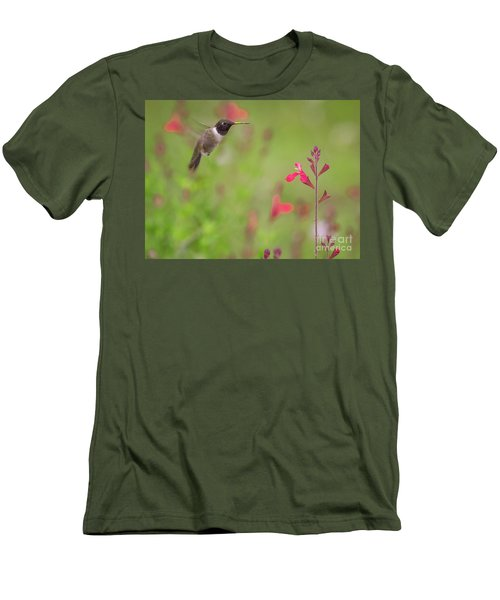 Hummingbird And Sage Men's T-Shirt (Athletic Fit)