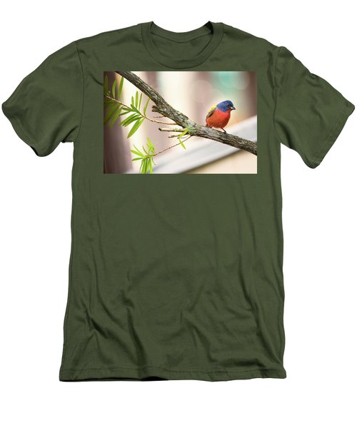 Male Painted Bunting Men's T-Shirt (Athletic Fit)