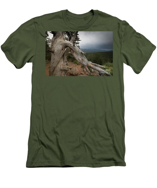 Old Tree On The Mountain Men's T-Shirt (Slim Fit)