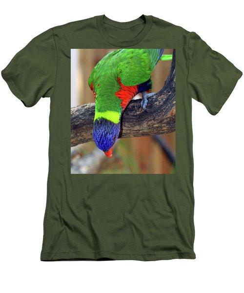 Rainbow Lorikeet Men's T-Shirt (Slim Fit) by Inspirational Photo Creations Audrey Woods