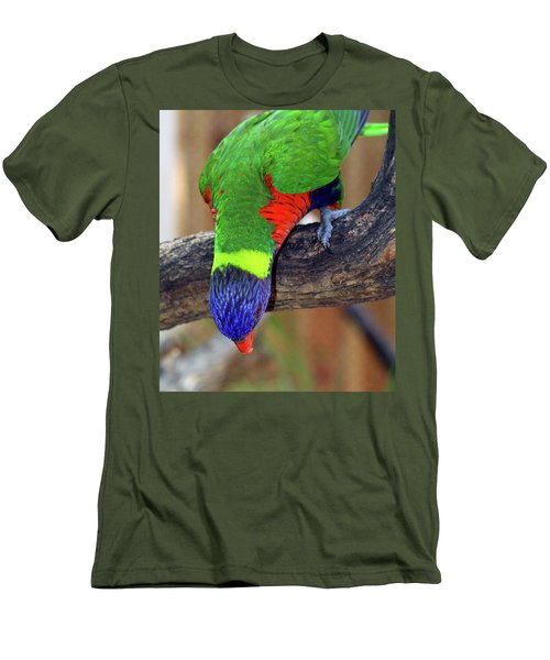 Rainbow Lorikeet Men's T-Shirt (Athletic Fit)
