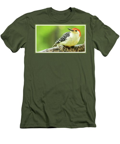 Red Bellied Woodpecker, Male, Animal Portrait Men's T-Shirt (Slim Fit) by A Gurmankin