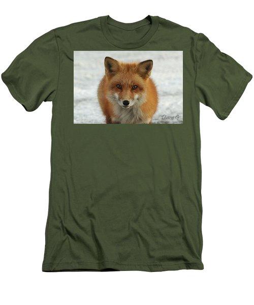 Red Fox Men's T-Shirt (Slim Fit) by Diane Giurco