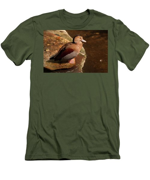 Men's T-Shirt (Slim Fit) featuring the photograph Ringed Teal On A Rock by Chris Flees