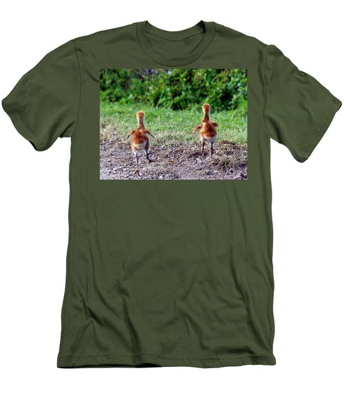 Sandhill Crane Chicks 000 Men's T-Shirt (Athletic Fit)