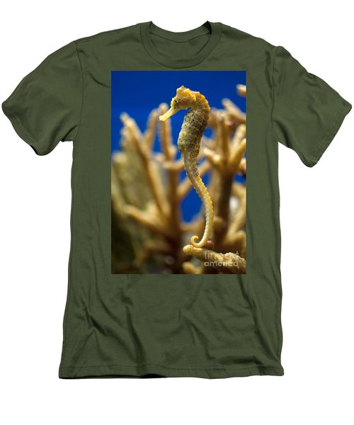 Sea Horses Men's T-Shirt (Slim Fit) by Carol Ailles