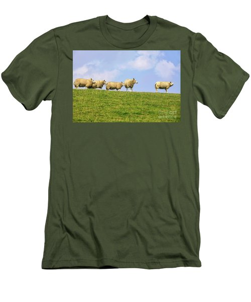Men's T-Shirt (Slim Fit) featuring the photograph Sheep On Dyke by Patricia Hofmeester