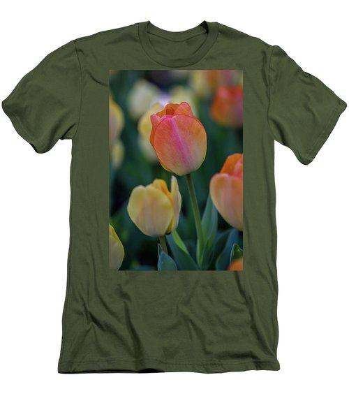 Spring Tulip Men's T-Shirt (Athletic Fit)