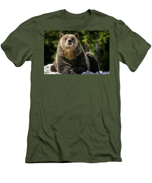 The Grizzly Bear Grinder Men's T-Shirt (Athletic Fit)