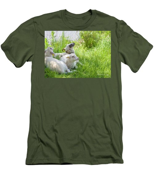 Men's T-Shirt (Slim Fit) featuring the photograph Three Little Lambs by Patricia Hofmeester