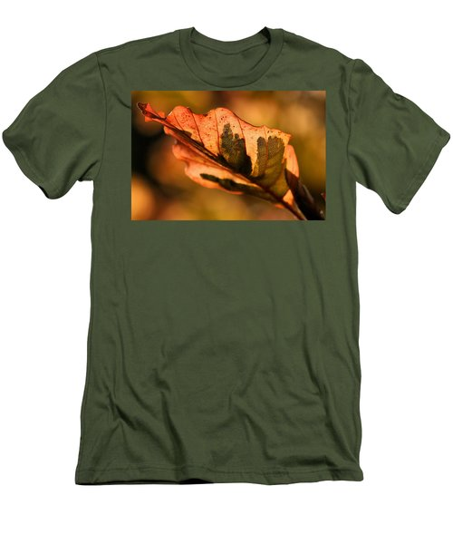 Men's T-Shirt (Slim Fit) featuring the photograph Tri-color Beech In Autumn by Angela Rath
