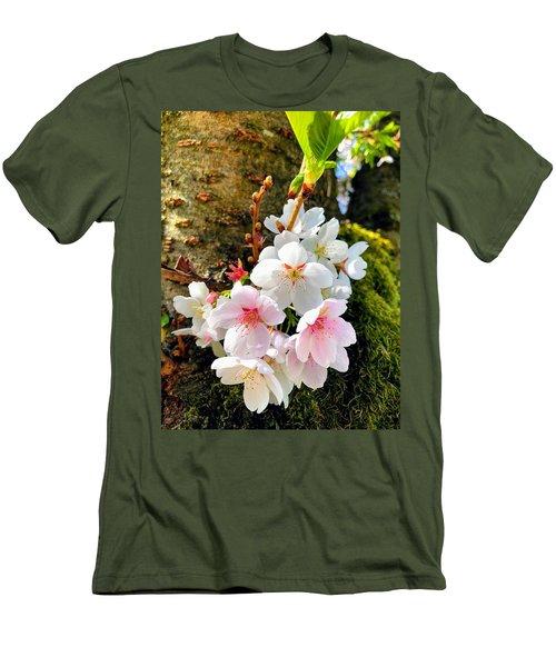 White Apple Blossom In Spring Men's T-Shirt (Athletic Fit)