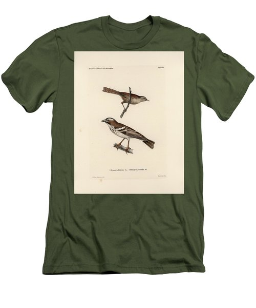 White-browed Sparrow-weaver And Grass Or Bush Warbler Men's T-Shirt (Athletic Fit)