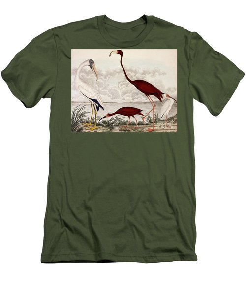 Wood Ibis, Scarlet Flamingo, White Ibis Men's T-Shirt (Athletic Fit)