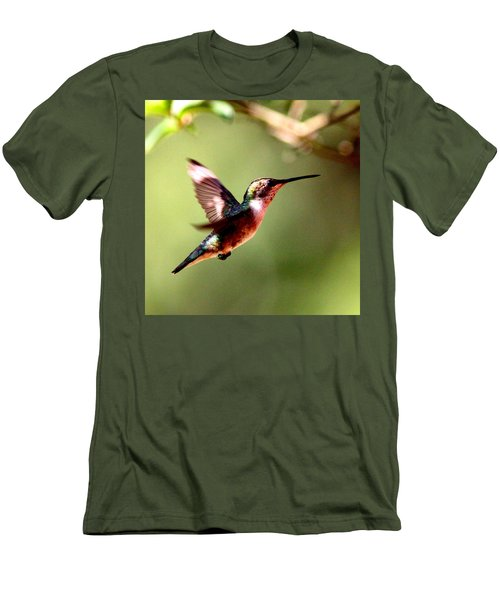 103456 - Ruby-throated Hummingbird Men's T-Shirt (Athletic Fit)