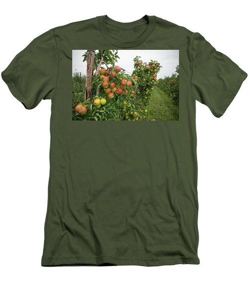 Men's T-Shirt (Slim Fit) featuring the photograph Apple Orchard by Hans Engbers