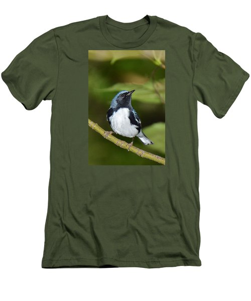 Black-throated Blue Men's T-Shirt (Slim Fit) by Alan Lenk