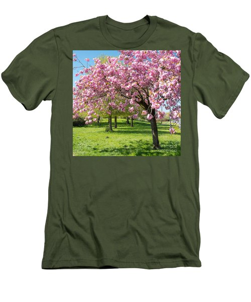 Cherry Blossom Tree Men's T-Shirt (Slim Fit) by Colin Rayner