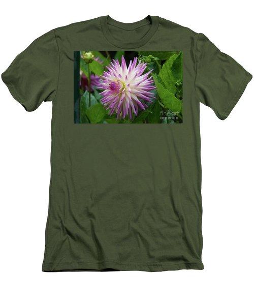 Glenbank Twinkle Dahlia Men's T-Shirt (Athletic Fit)