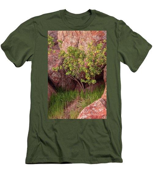 Men's T-Shirt (Slim Fit) featuring the photograph Hidden by Iris Greenwell