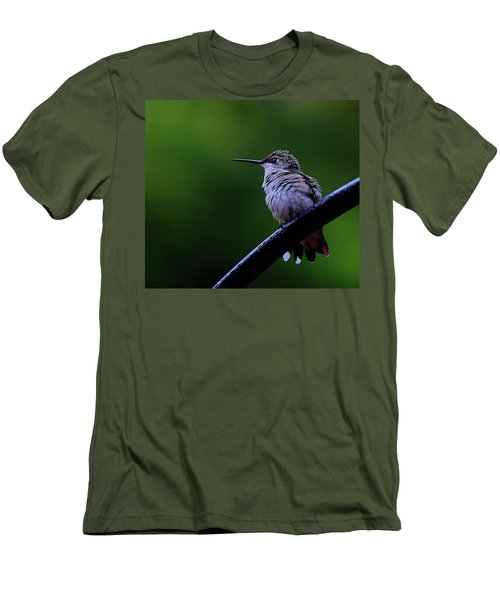Hummingbird Portrait Men's T-Shirt (Slim Fit) by Ronda Ryan