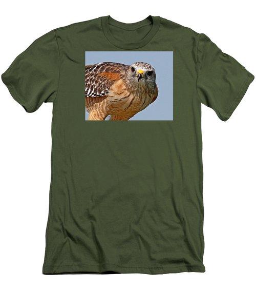 Red Shouldered Hawk Men's T-Shirt (Athletic Fit)