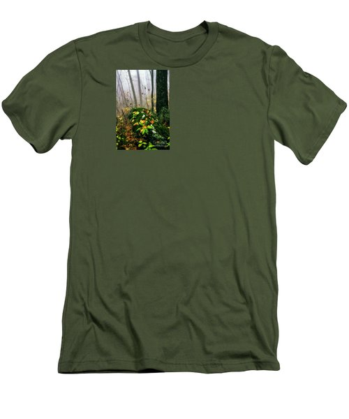 Autumn Monongahela National Forest Men's T-Shirt (Slim Fit) by Thomas R Fletcher