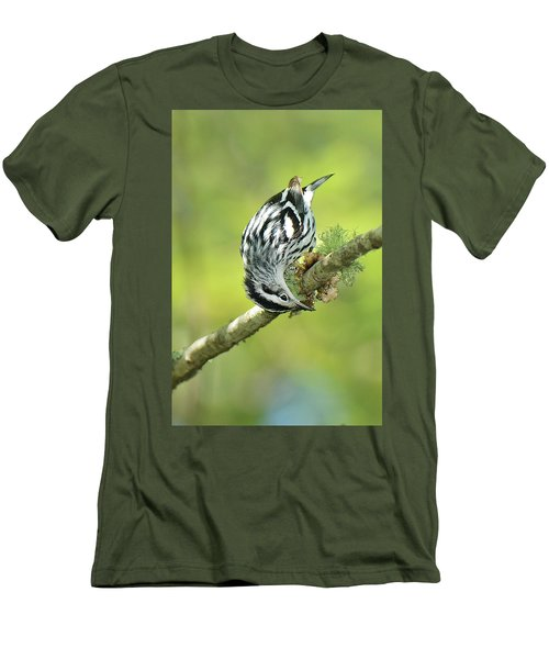 Black And White Warbler Men's T-Shirt (Slim Fit) by Alan Lenk