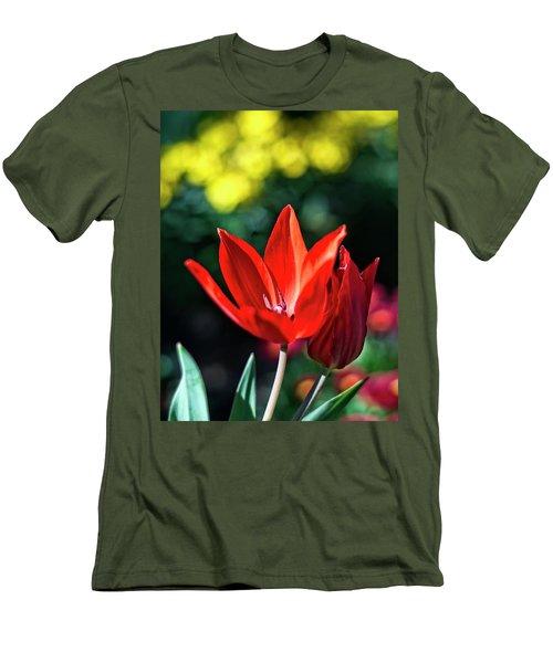 Spring Garden Men's T-Shirt (Athletic Fit)