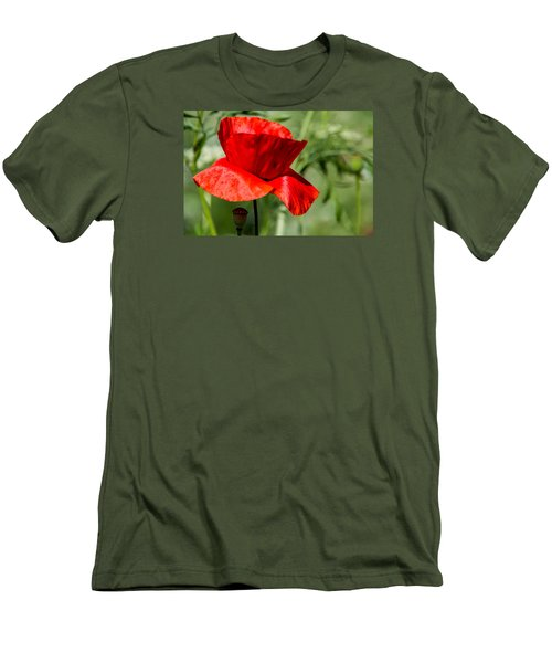 Poppy Men's T-Shirt (Slim Fit) by Martina Fagan