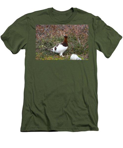 Willow Ptarmigan Men's T-Shirt (Athletic Fit)