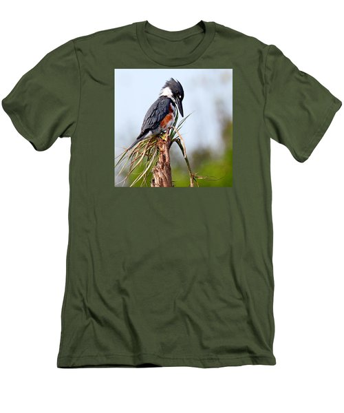Belted Kingfisher Men's T-Shirt (Slim Fit)