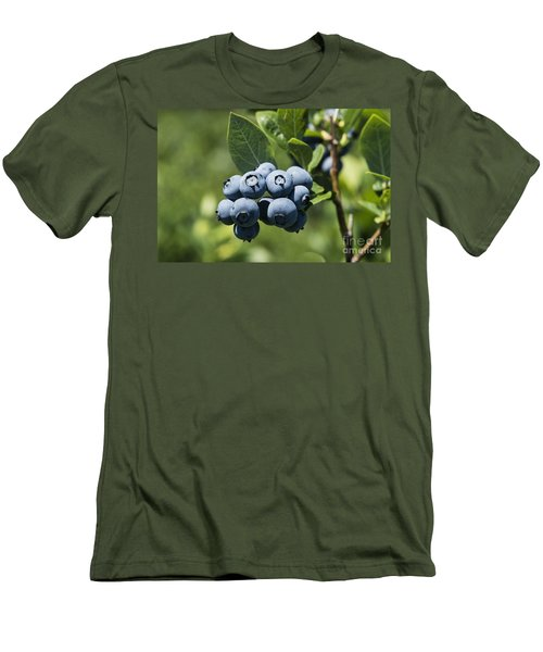 Blueberry Bush Men's T-Shirt (Athletic Fit)