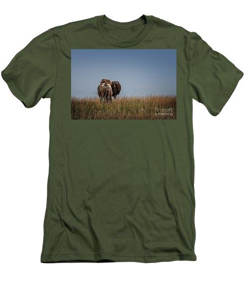 A Bison Interrupted Men's T-Shirt (Athletic Fit)